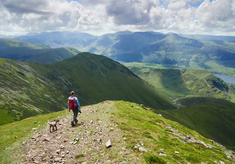 7 Top Dog Friendly Cumbria Attractions & Days Out