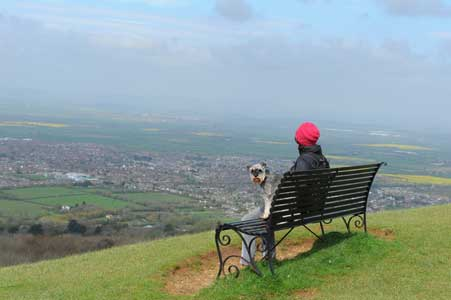 7 Top Dog Friendly Cotswolds Attractions & Days Out