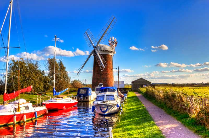 7 Top Dog Friendly Norfolk Attractions & Days Out