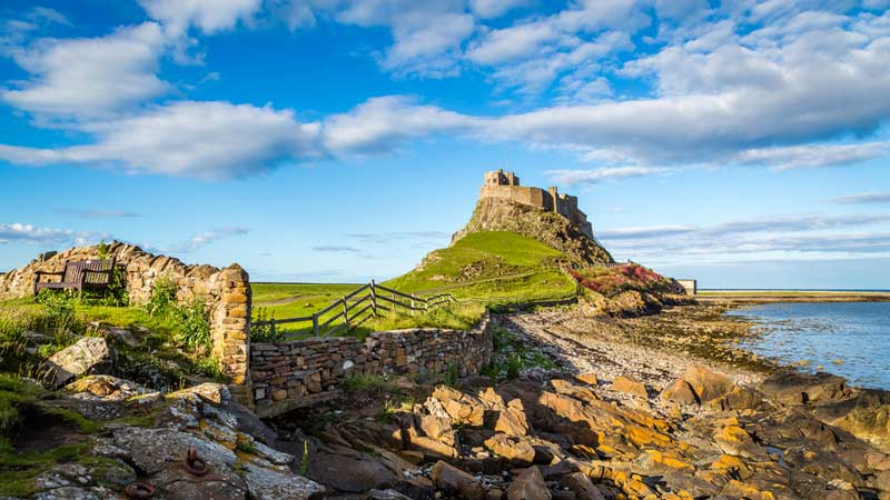 7 Top Dog Friendly Northumberland Attractions & Days Out