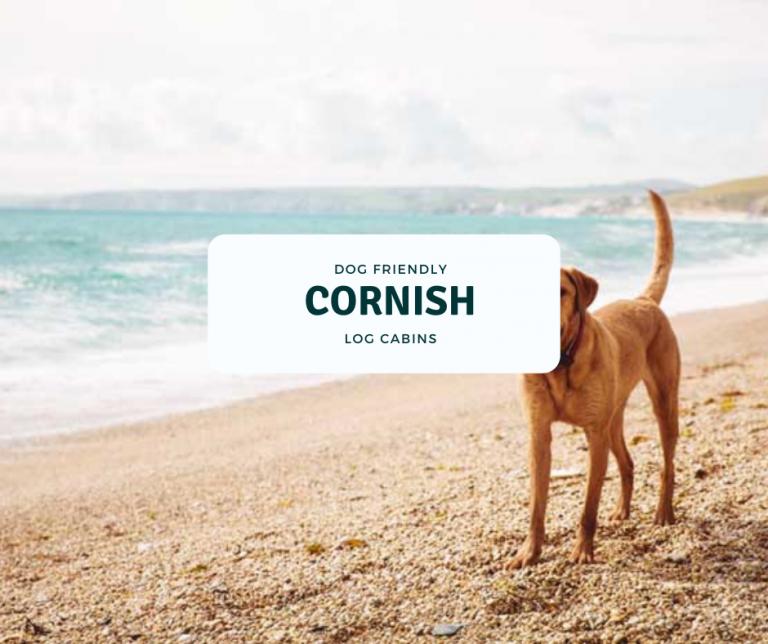 dog friendly Cornwall log cabins