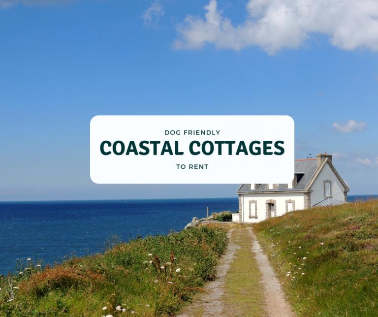 dog friendly coastal cottages