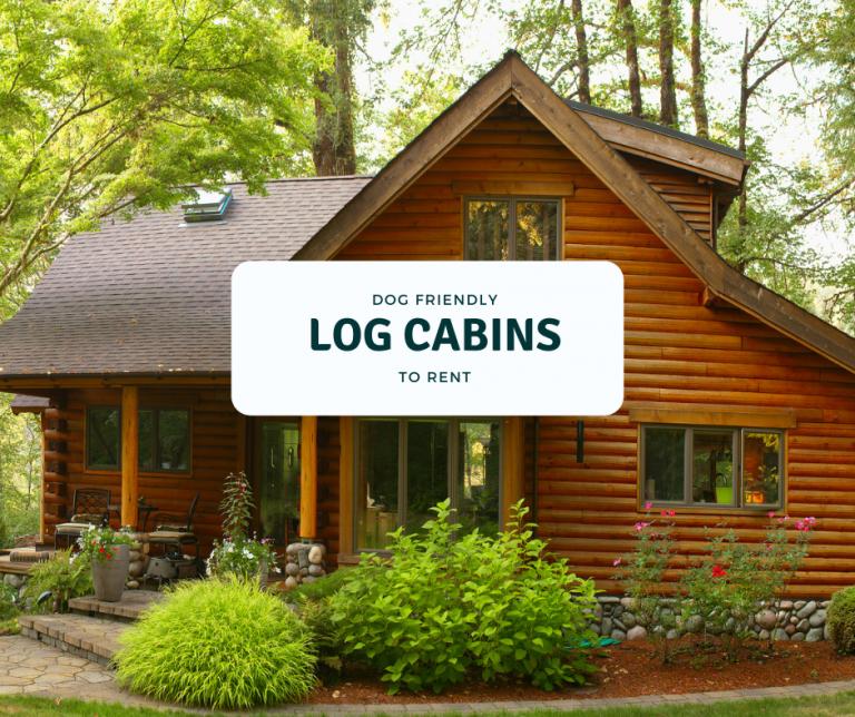 dog friendly log cabins