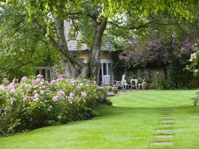dog friendly breaks with enclosed gardens